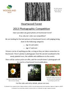 Heartwood photo comp 2013a