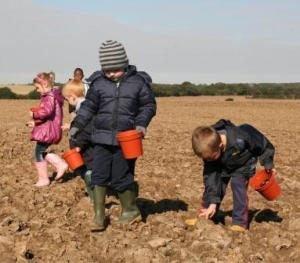This season kicked off with tiny children scattering tree seeds to help create Heartwood